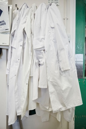 Mill Hill Labcoats